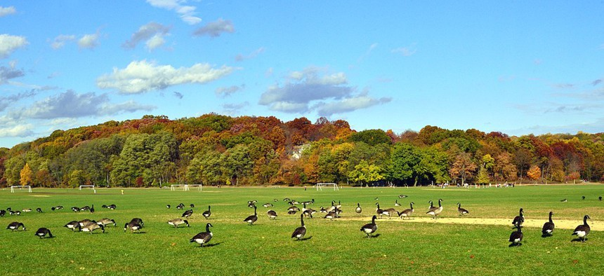 Van Cortlandt Park in the Bronx.