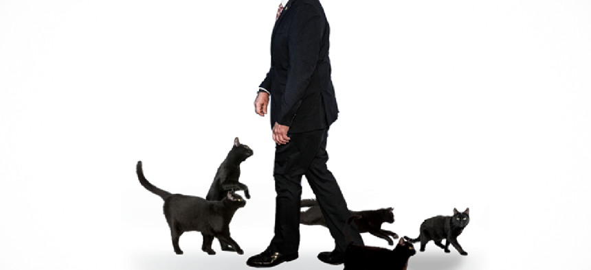 andrew cuomo surrounded by black cats