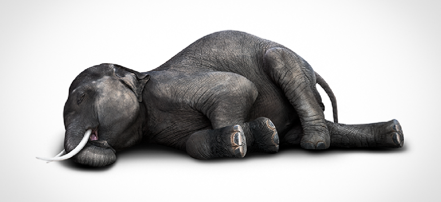 Dead Elephant laying on its side