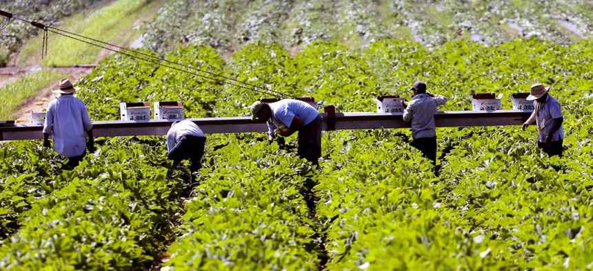 A New York State wage board has until the end of the year to decide on potential changes to overtime rules under the Farm Laborers Fair Labor Practices Act.
