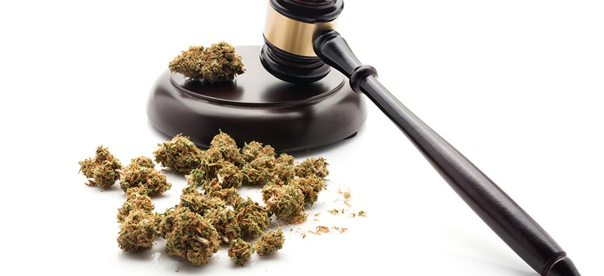 A judges gavel next to weed