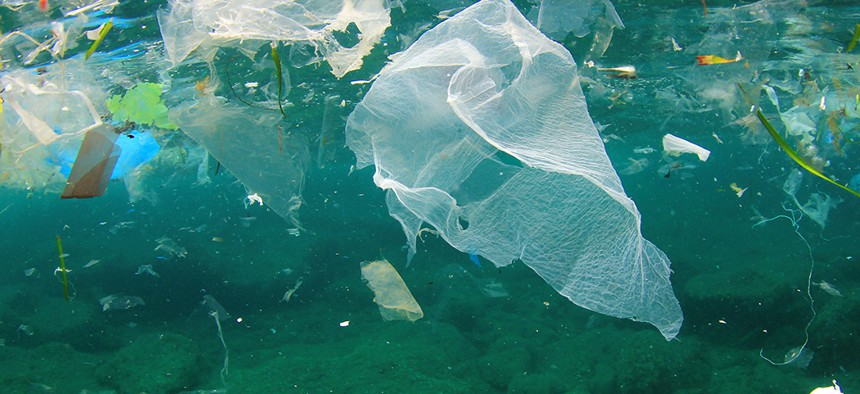 Plastic bags floating in water.